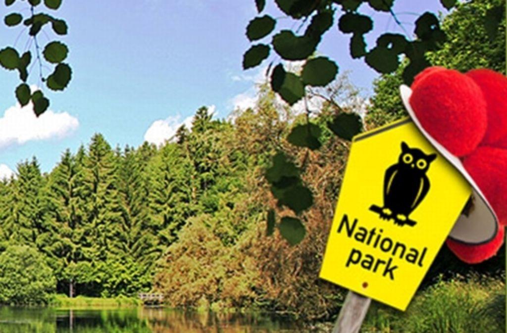Der Verein Freundeskreis Nationalpark unterstützt  die Einführung eines zehn mal zehn Kilometer großen Großschutzgebietes im  Nordschwarzwald. Foto: StZ