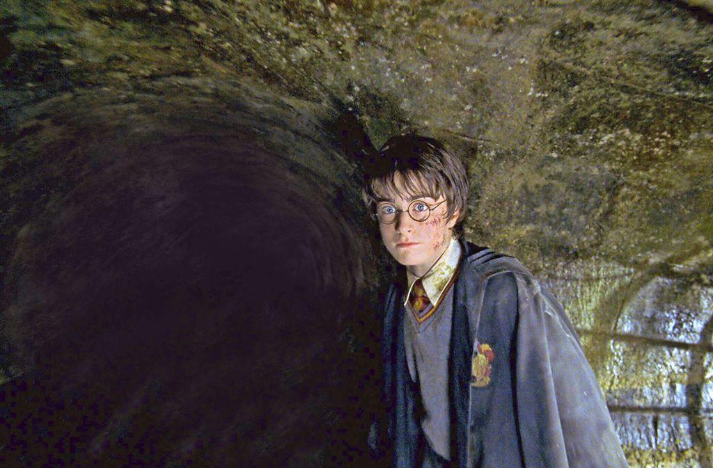 Harry Potter und die Lebenswirklichkeit – eines der Themen im Merlin Foto: picture alliance