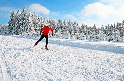 Bei blauem Himmel gleiten die Langläufer in den Loipen - vielleicht mit dem Segen von oben? Ein Teil der Loipen im österreichischen Böhmerwald ist nämlich in klösterlicher Hand. Foto: SoAk