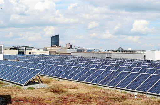 Fotovoltaik und Begrünung: Dächer spielen große Rolle