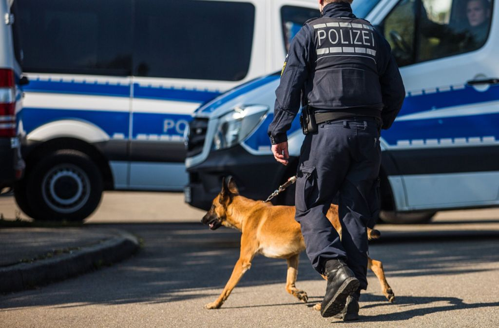 Zwei Polizeihunde sind in der Nacht zum Sonntag in Vaihingen an der Enz bei einem Einsatz beteiligt gewesen. (Symbolfoto) Foto: dpa