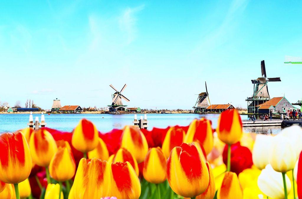 Schön und bei Besuchern beliebt: Immer mehr Touristen wollen Urlaub in den Niederlanden machen. Foto: Kisa_Markiza - stock.adobe.com