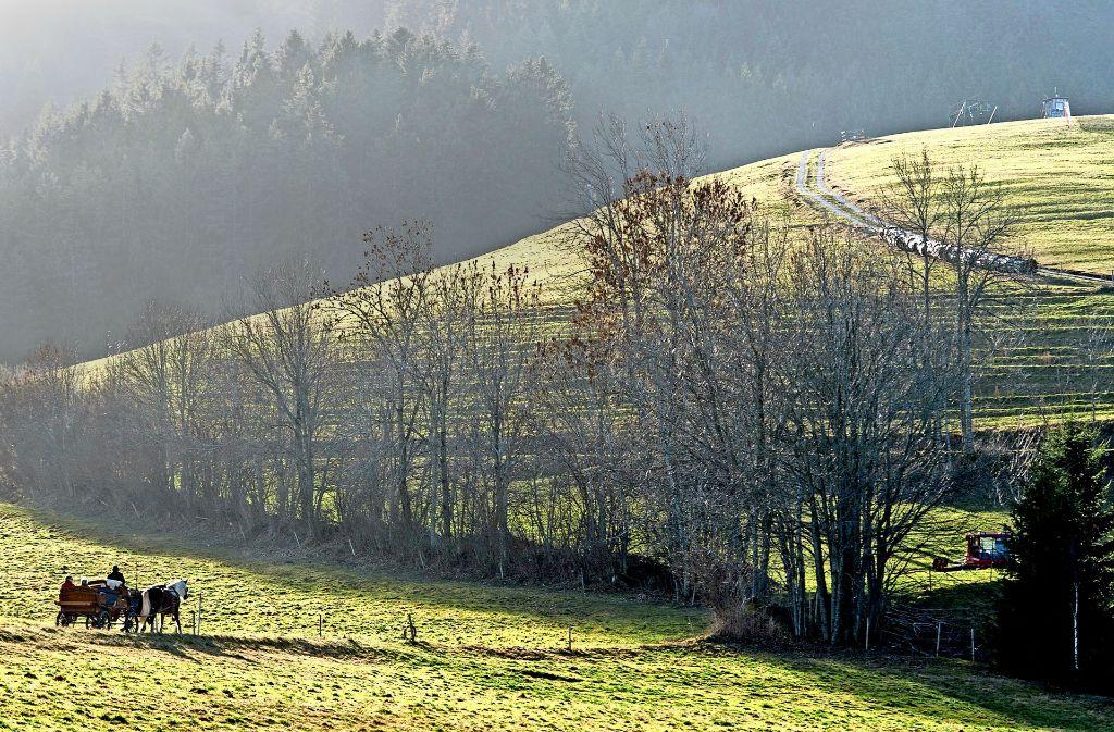 Milde, schneelose Winter, wie hier im Schwarzwald bei Hinterzarten, und zunehmend heiße Sommer – das bringt der Klimawandel in Deutschland mit sich. Foto: dpa