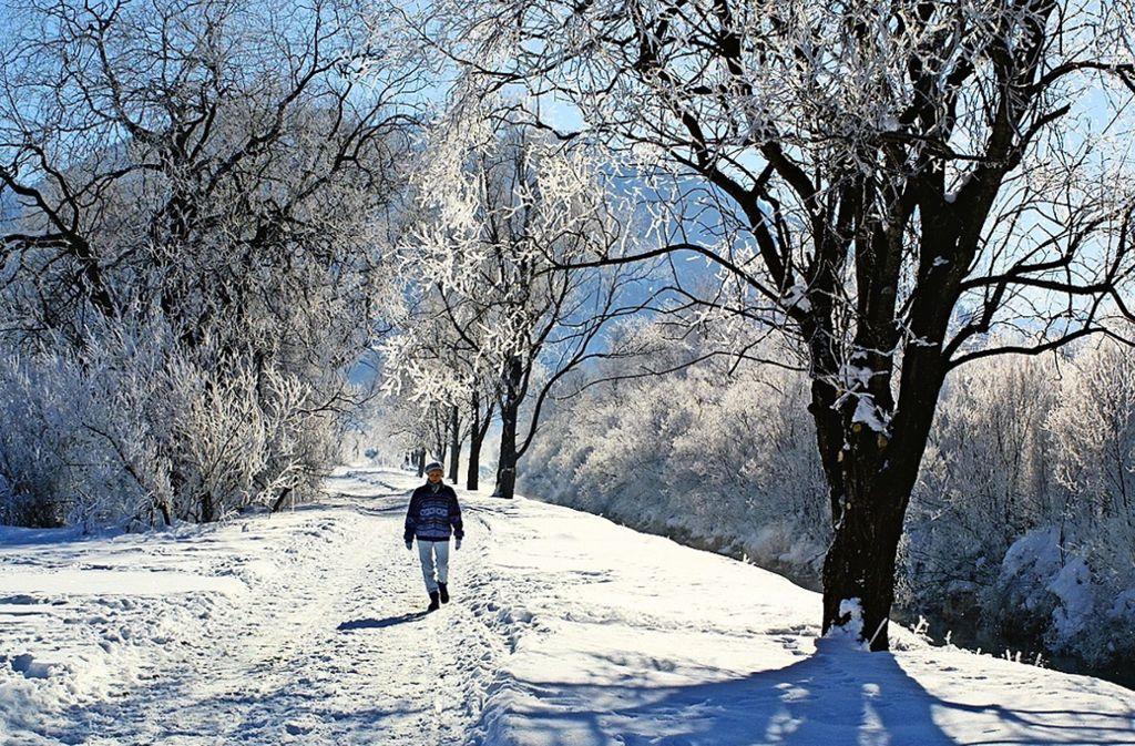 Ein Wintertraum: Spaziergang an der Ammer Foto: Eberhard Straosczik