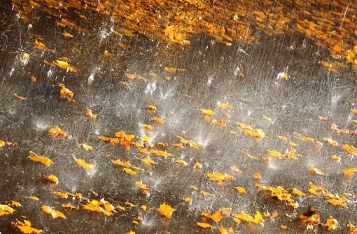 Sturmsaison ist eröffnet - Regen erwartet