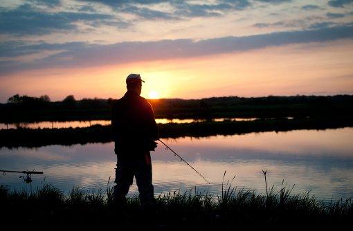 Angler entdeckt Leiche in der Donau