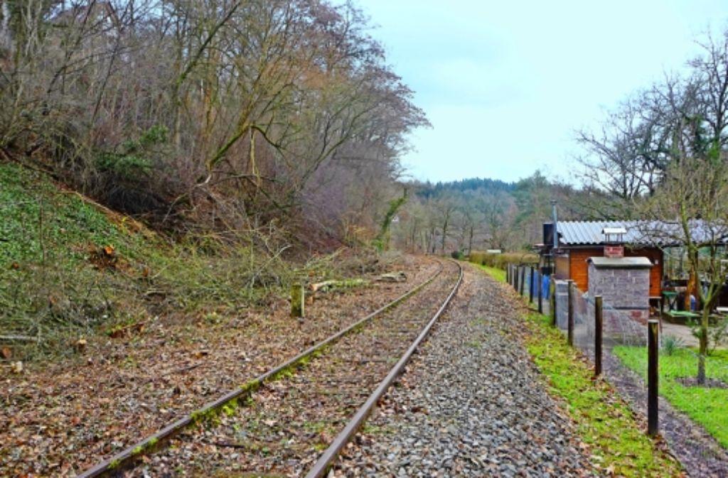 Es fehlen (fast) nur noch die Züge auf der alten Bahnstrecke  bei Calw. Foto: Venturini