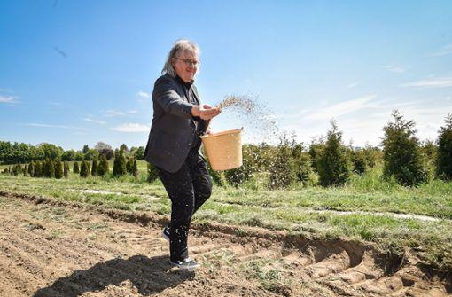 Bürgermeister Pätzold übernimmt Blühpatenschaft