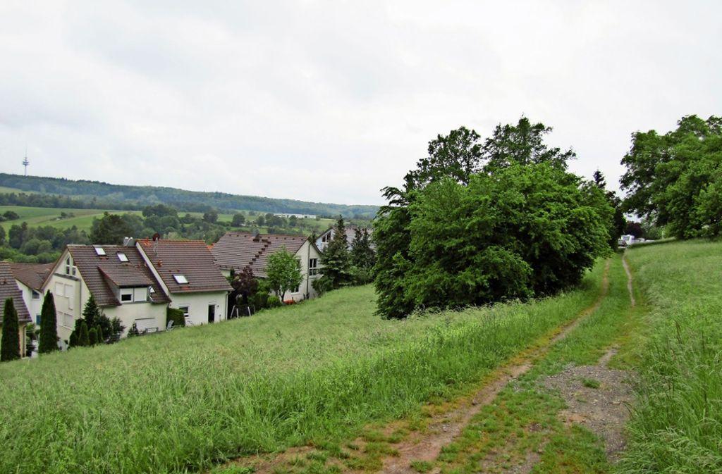 Der Knollenmergel im Gebiet Liebenau VII könnte es in sich haben. Foto: Claudia Barner