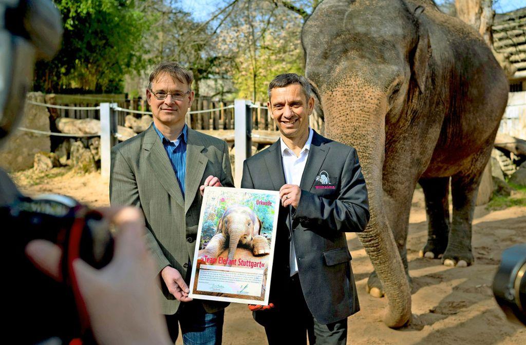 Stefan Ziegler (links) vom WWF und Wilhelma-Chef Thomas Kölpin haben das  neue Elefantenprojekt in der Wilhelma vorgestellt. Foto: Lichtgut/Max Kovalenko