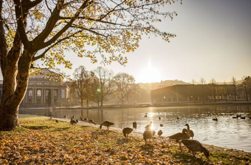 Stuttgart erwartet ein mildes Wochenende
