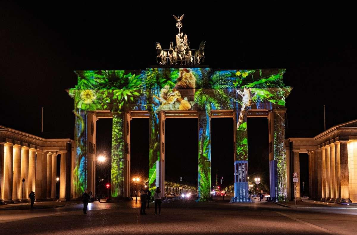 """Das Brandenburger Tor gehört zu den Gebäuden, die beim """"Festival of Lights"""" angestrahlt werden. Foto: dpa/Paul Zinken"""