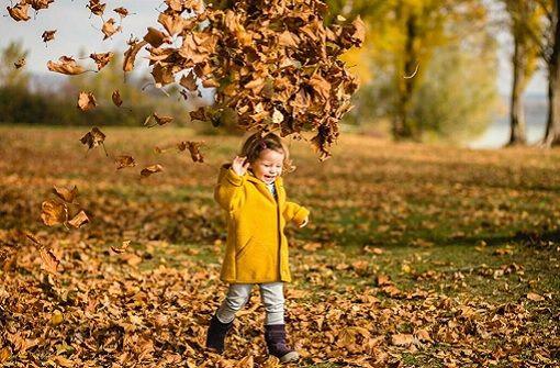 Zehn Ideen für einen Herbsttag mit Kindern