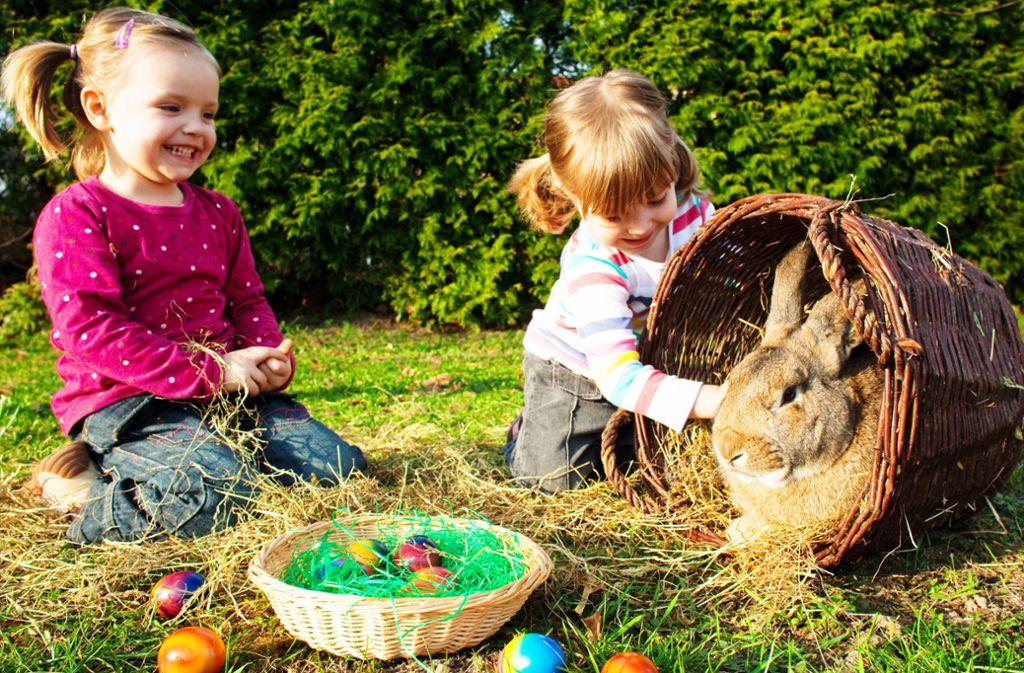 Ostern ist mehr als bunte Eier und süße Häschen. Foto: dpa/Patrick Pleul