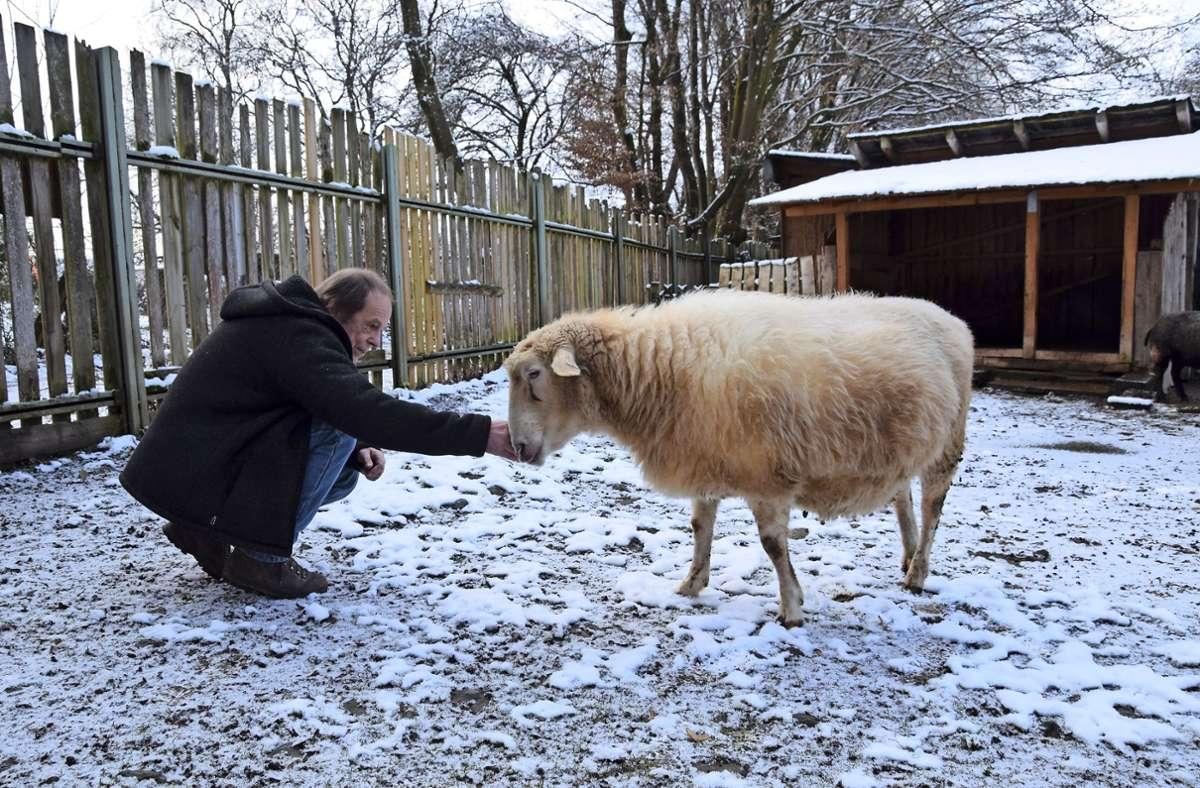 2020 war auf den Jugendfarmen wenig los. Über Monate hinweg mussten sich die Mitarbeiter wie Thomas Lang von der Möhringer Farm allein um die Tiere kümmern. Foto: Alexandra Kratz