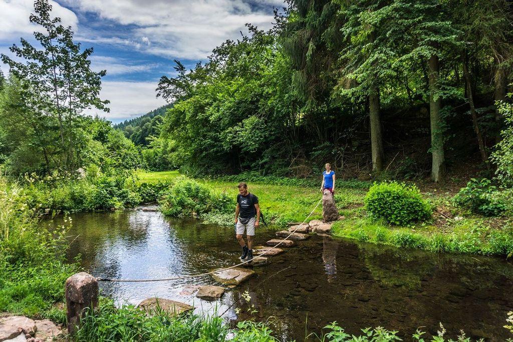 Der Teinacher ist ein Genießerpfad mit viel Abwechslung und erfordert gute Kondition. Foto: Tourismus GmbH Nördlicher Schwarzwald