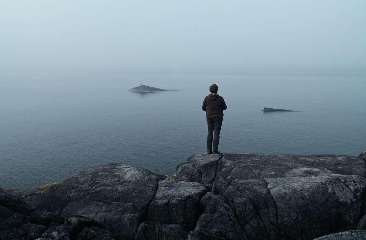 """Die Wal-Forscherin Janie Wray an der kanadischen Pazifikküste in """"The Whale and the Raven"""" Foto: SWR/busse&halberschmidt"""