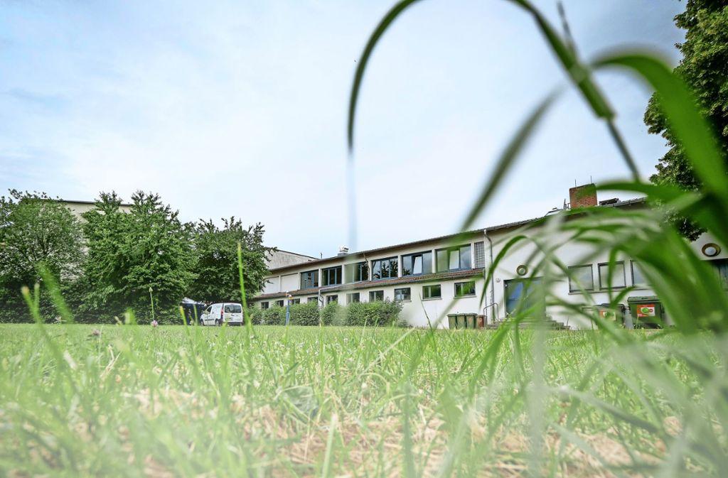 Die Festwiese bei der Albert-Buddenberg-Halle auf dem Schulareal hat schon viele Veranstaltungen erlebt. Foto: factum/Simon Granville