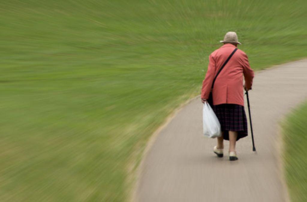 Ein Dieb entreißt einer Seniorin die Einkaufstasche und flüchtet. (Symbolfoto) Foto: Shutterstock/Guy Erwood