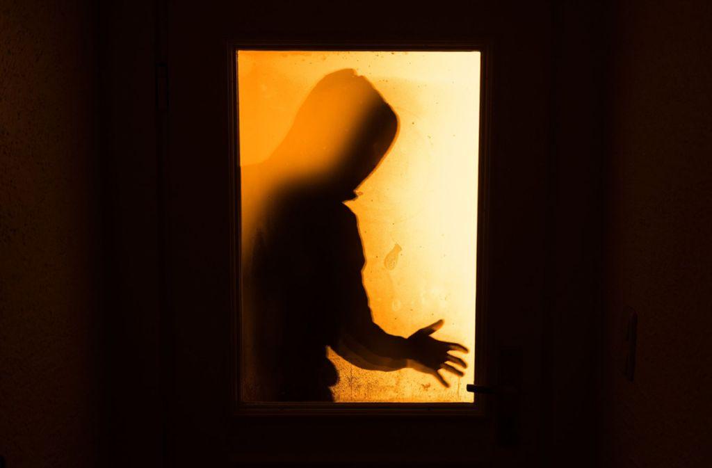 Die beiden 17 und 18 Jahre alten Zeugen  beobachteten den Einbrecher bei dessen Tat und alarmierten die Polizei. (Symbolbild) Foto: dpa/Nicolas Armer