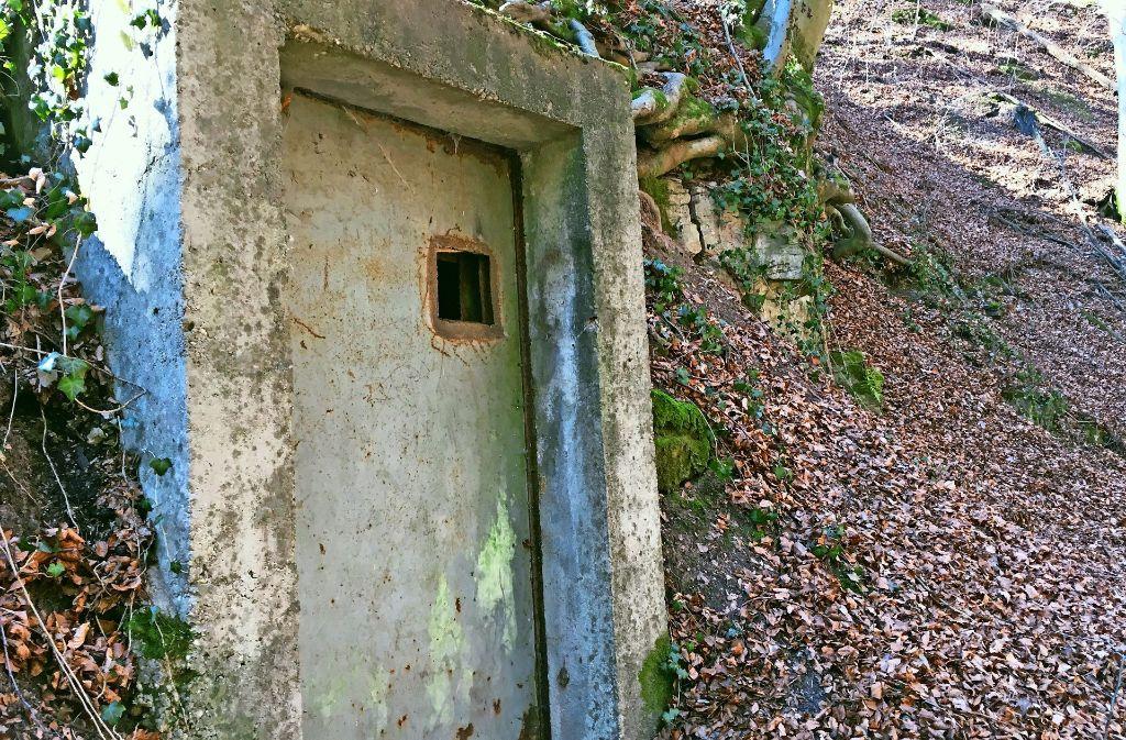 Was hat es wohl mit dieser Tür im Wald auf sich? Foto: Decksmann