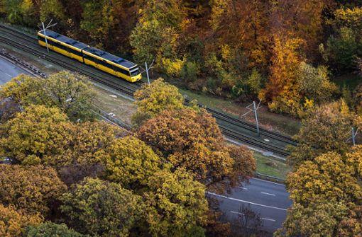 Fünf Redakteure tauschen Autos gegen Bus und Bahn