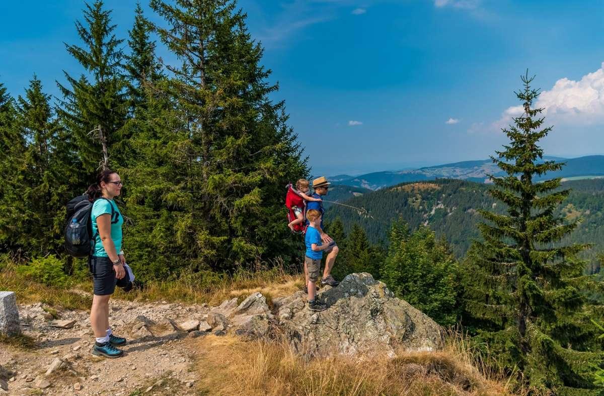 Der Belchen ist als der schönste Berg im Schwarzwald bekannt. Foto: Schwarzwald Tourismus