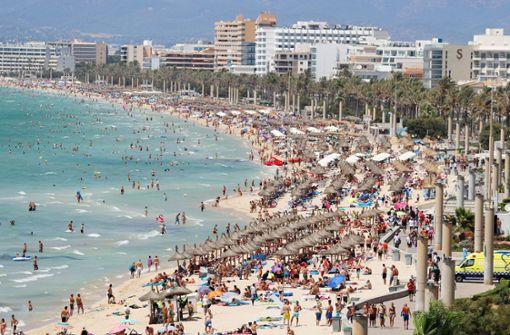 Gefährlicher Parasit auf Mallorca und Teneriffa entdeckt