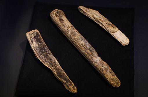 """Meißel aus Mammut-Elfenbein sind """"Fund des Jahres"""""""