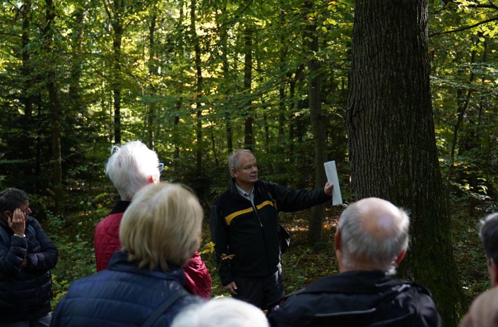 """Der 101. Stadtspaziergang befasste sich mit dem Thema """"Der Stuttgarter Stadtwald"""". Foto: Lichtgut/Metehan Demirkaya"""
