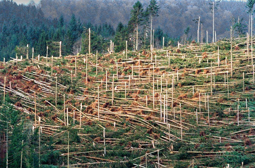 Kaum ein Baum steht nach Lothar noch in diesem Waldstück in Simonswald bei Freiburg. Foto: dpa/Rolf Haid