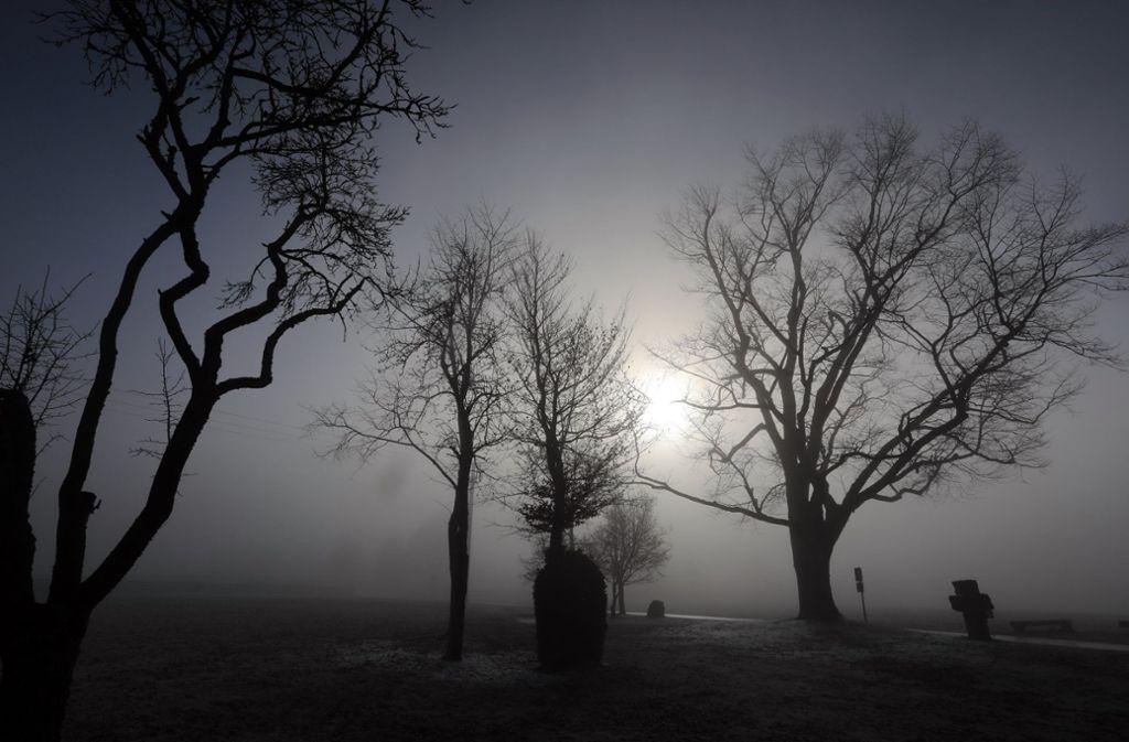 Ein bisschen Nebel, ein bisschen Sonne – so wird das Wetter am Wochenende in Baden-Württemberg. Foto: dpa/Ralf Zwiebler