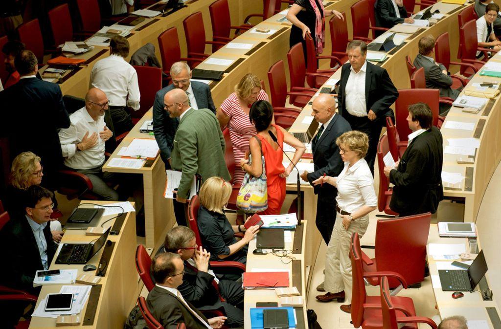 In der Landtagsfraktion gibt es Unmut wegen der Vorsitzenden. Foto: dpa