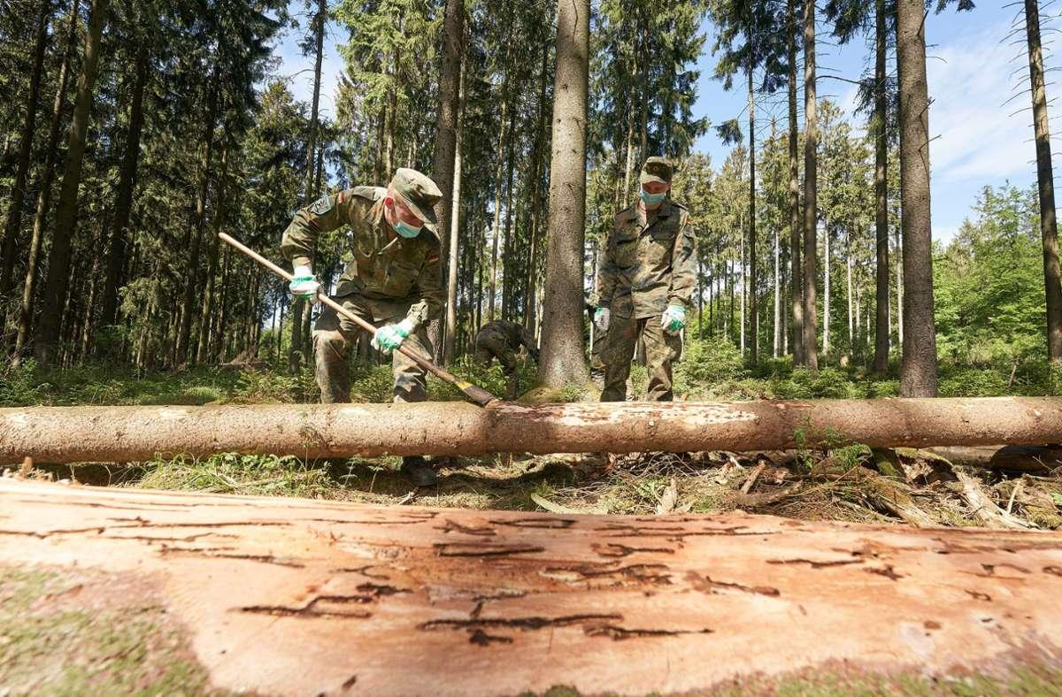 Die Bundeswehr im Forsteinsatz (Archivbild) Foto: dpa/Thomas Frey