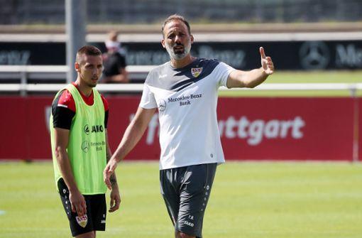 Pellegrino  Matarazzo freut sich auf  Test gegen  FC Liverpool