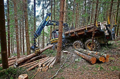 Vorfahrt für umweltfreundliches Arbeiten auch im Wald
