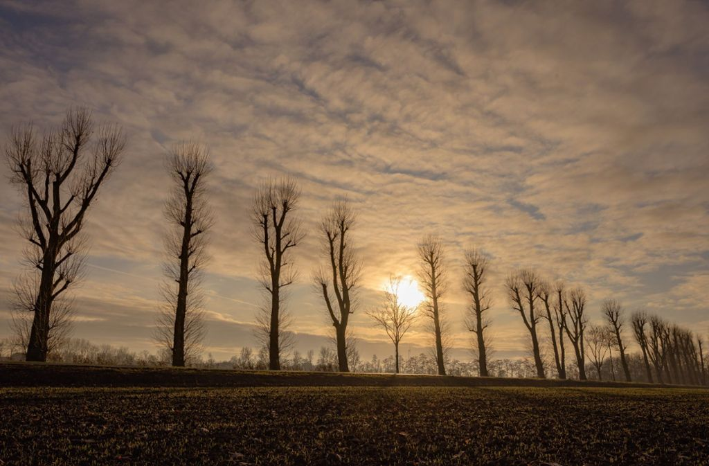 Es bleibt frostig im Südwesten. Foto: dpa/Mohssen Assanimoghaddam