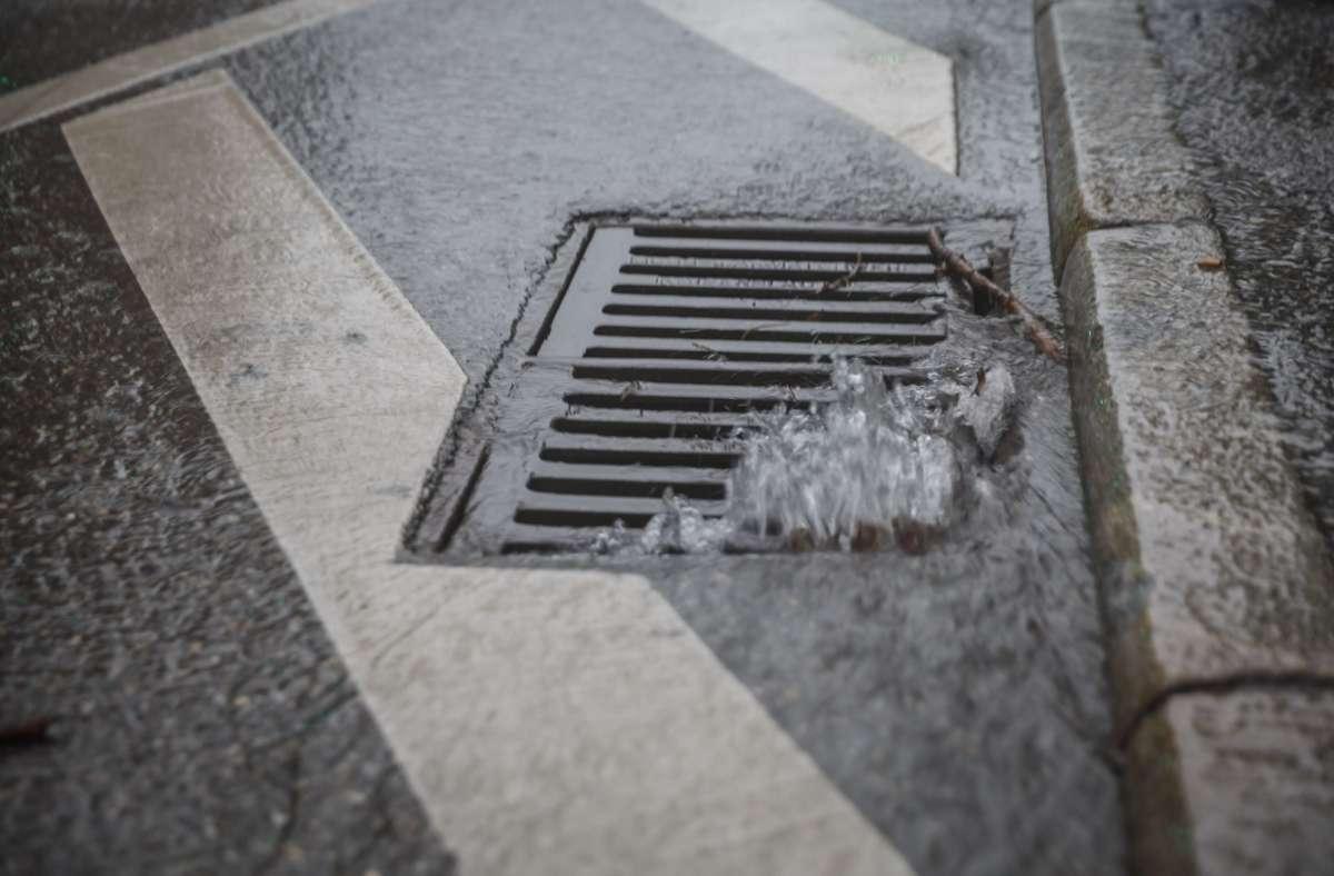 Es gab im Juli mehr Regen als sonst. Foto: Lichtgut/Julian Rettig