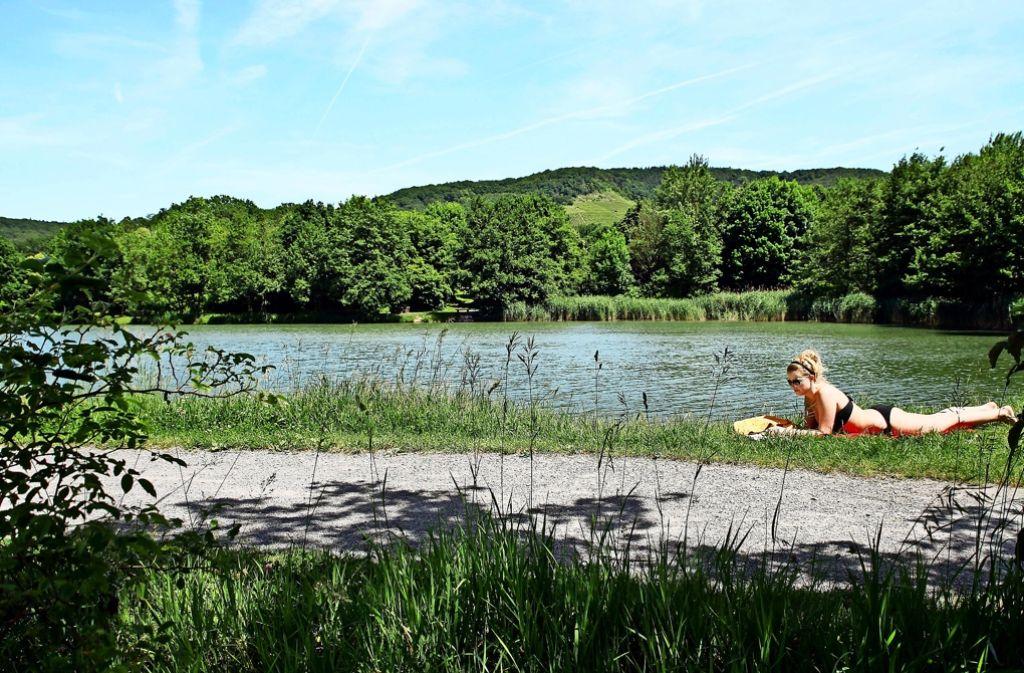 Ganz so ruhig geht es am Unteren Seewaldsee zwar selten zu. Überlaufen ist die Gegend allerdings auch nur sehr selten. Foto: