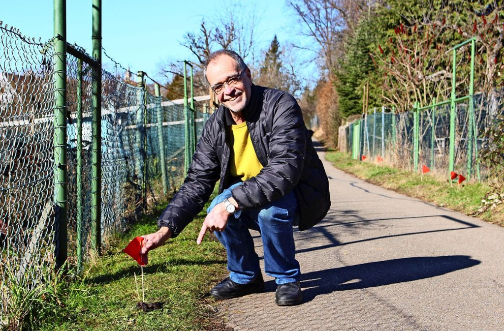 Nah dran am Gestank und trotzdem noch freundlich: Bernd Spellenberg markiert einen Hundehaufen mit einem seiner Fähnchen. Foto: Caroline Holowiecki