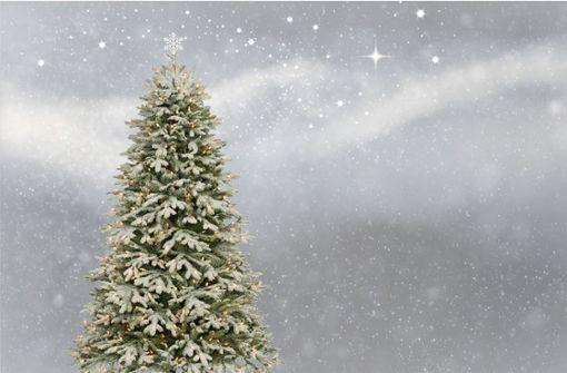 Wer spendet einen Weihnachtsbaum?