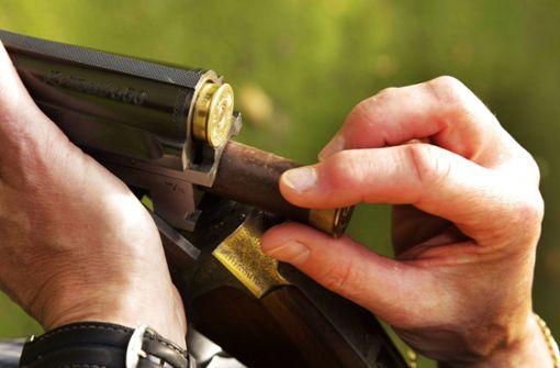 Mehrere Graugänse mit Schrotgewehr erschossen