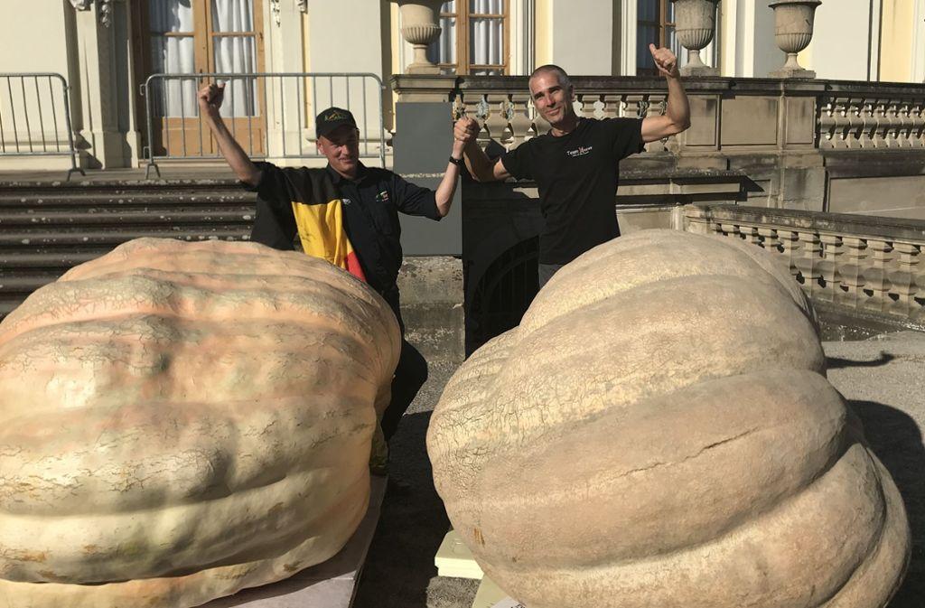 Jan Biermanns aus Belgien und Stefano Cutrupi aus Italien sind Europameister im Kürbiszüchten. Ihre Kolosse brachten jeweils exakt 965,5 Kilo auf die Waage. Klicken Sie sich durch die Bilderstrecke. Foto: Kürbisausstellung Ludwigsburg