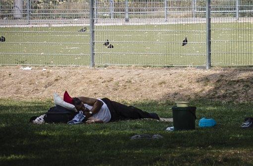 Roma nutzen niederschwellige Hilfen