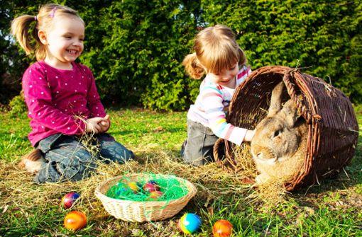 Wieso verstecken wir bunte Eier – und woher kommt der Osterhase?