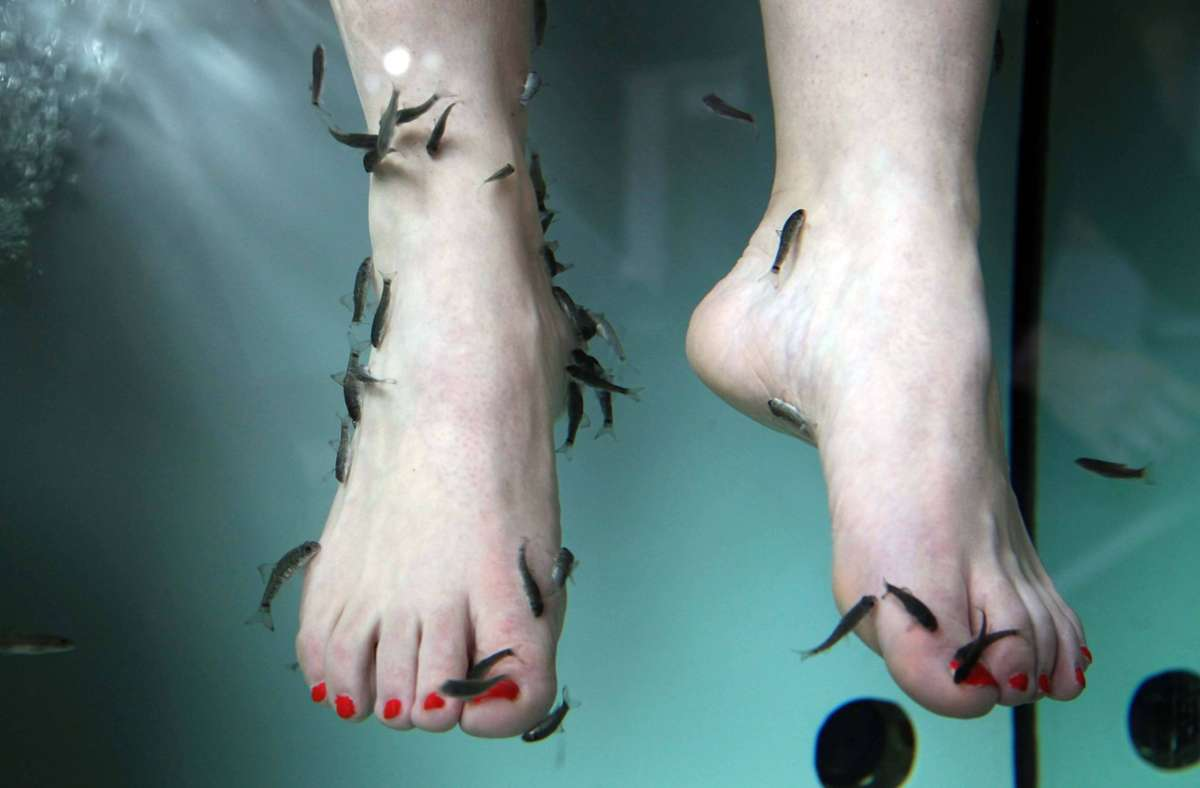 Forscher haben die Kosmetik-Behandlung  an den Füßen unter die Lupe genommen. Foto: imago stock&people/imago stock&people