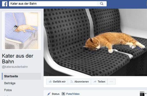 S-Bahn-Kater hat eigene Facebookseite