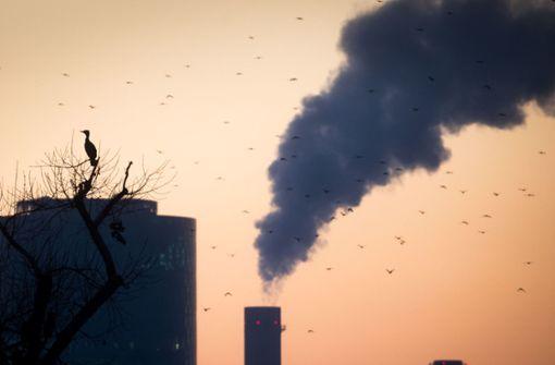 IWF berechnet Kosten einer CO2-Steuer