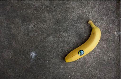 Wimsheim  bleibt Fairtrade-Gemeinde
