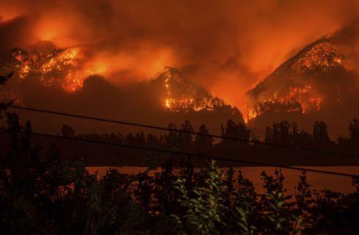 Feuer verursacht - Teenager muss Millionen abzahlen